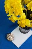 Le seau de narcisse fleurit dans le vase, enveloppe sur le fond bleu Photos stock