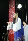 Le second rôle masculin triste et chantent, les distillateurs jinyuliangyuan d'opéra taiwanais photographie stock