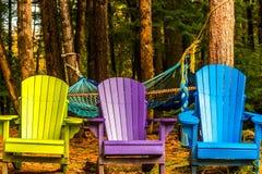 Le sedie di legno variopinte ai fiumi orlano nei colori dell'autunno, w immagine stock