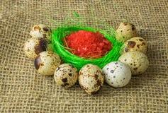 Le sel rouge se trouve sur la couleur vert clair de vert de sisal de remplisseur entouré par des oeufs de caille sur une table en Photographie stock