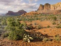 Le sentier de randonnée d'Edona Arizona mène aux vues étonnantes de désert Images libres de droits