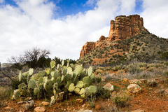 Le sentier de randonnée de Sedona Arizona mène aux formations de roche rouges étonnantes Images stock