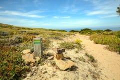 Le sentier de randonnée Rota Vicentina d'Odeceixe à Zambujeira troublent par le paysage de l'Alentejo, Portugal Image libre de droits