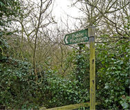 Le sentier piéton public signent dedans la forêt Photographie stock