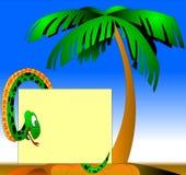 Le serpent vert près des paumes Photos libres de droits