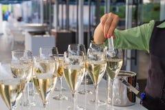 Le serveur jette une couverture en verres de vin photographie stock libre de droits