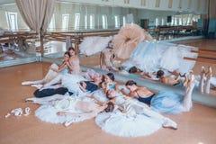 Le sette ballerine contro la barra di balletto Immagini Stock