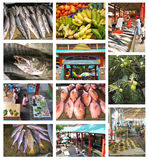 Le Seychelles Immagine Stock