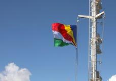 Le Seychelles inbandierano il flusso continuo nel vento sull'albero di fotografia stock libera da diritti