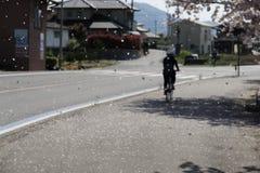 Le Shimanami Kaido l'itinéraire de bicyclette de les plus populaires au Japon Photos stock
