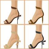 Le shoes-2 des femmes Photo libre de droits