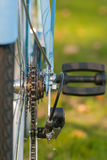 Le signore d'annata vanno in bicicletta la parte nel parco della città Fotografie Stock