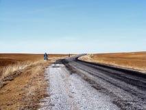 Le sillage de la nature dans le climat de steppe et le climat de steppe, l'amour de la nature, la vue de venir de ressort, Images libres de droits