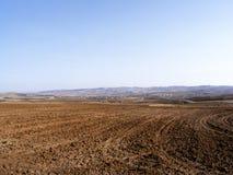 Le sillage de la nature dans le climat de steppe et le climat de steppe, l'amour de la nature, la vue de venir de ressort, Image libre de droits