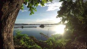 Le siluette degli alberi decora la vista del lago durante il tramonto video d archivio