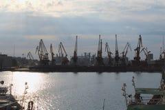 Le siluette di grande porto cranes nel porto del mare con luce solare stupefacente Immagine Stock Libera da Diritti