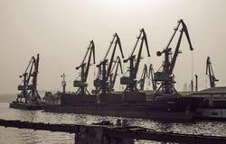 Le siluette di un gruppo di gru nel carico port a Bacu Immagini Stock