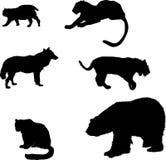 Le siluette predatori hanno impostato Fotografia Stock
