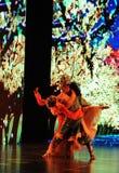Le sino couple-grand  tibétain de show†de scénarios d'échelle le  de legend†de route Image stock