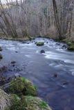 Le Sioule, rivière d'Auvergne au printemps photo stock