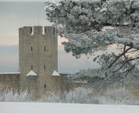 Le site de patrimoine mondial de l'UNESCO Visby.GN Image stock