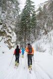 Le ski d'horaire d'hiver de la Transylvanie folâtre avec la famille dans les montagnes en Roumanie photo libre de droits
