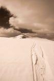 Le skieur suit la tonalité de sépia Images stock