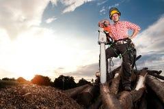 Le skogsarbetaren med chainsawen Fotografering för Bildbyråer
