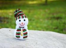 Le snögubben i trädgård Arkivbild