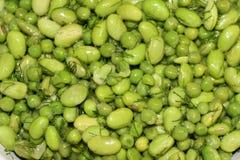 Le soja et salade de becs d'ancre Images stock