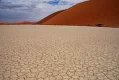 Le sol boue-criqué dans Deadvlei, Sossusvlei, Nami photos stock