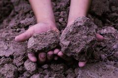 Le sol dans les enfants remettent, saleté cultivée, la terre, la terre, la terre brune b Images libres de droits