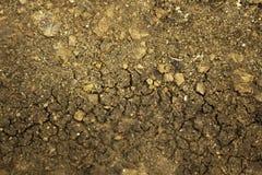 Le sol est sécheresse et manque d'abondance photos libres de droits