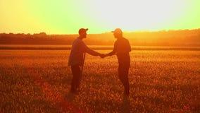 Le sol, examen de deux agriculteurs a rectifié au coucher du soleil banque de vidéos