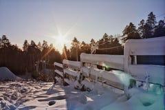 Le soleil était brillant pendant l'hiver image libre de droits