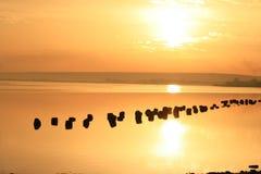 Le soleil au-dessus du lac. Photos libres de droits