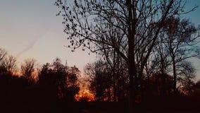 le soleil brûlant photos libres de droits