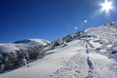 Le soleil brillant en montagnes de Rila de l'hiver, Bulgarie Image libre de droits