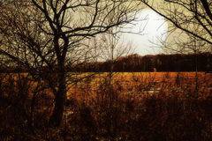 Le soleil caché humeur-allumé par automne en retard de mineur Photo stock
