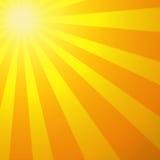 Le soleil chaud Photo libre de droits