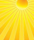 Le soleil chaud d'été Photos libres de droits