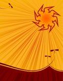 Le soleil chaud d'été Images stock