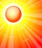 Le soleil chaud d'été Images libres de droits