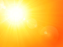 Le soleil chaud vibrant d'été avec l'épanouissement de lentille Image libre de droits