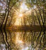Le soleil d'automne dans le lac Photo libre de droits