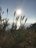 Le soleil de cinq terres Photos stock
