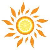 Le soleil de citron de vecteur Image stock