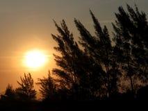 Le soleil de coucher du soleil avec le ciel jaune Image stock