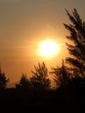 Le soleil de coucher du soleil avec le ciel jaune Photographie stock