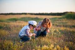 Le soleil de doigt de point de regard d'herbe de ressort d'insecte de fille de garçon Photo libre de droits